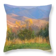 Watching The Field  Throw Pillow