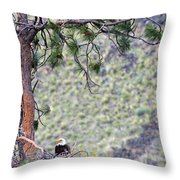 Watching The Nest Throw Pillow