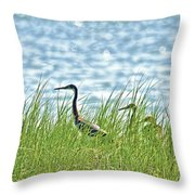 Watching The Race Throw Pillow