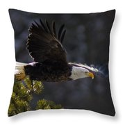 Watching The River Throw Pillow