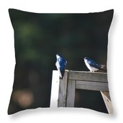 Watching The Sky Throw Pillow