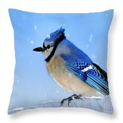 Watching The Snow Throw Pillow