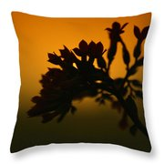 Watching The View Throw Pillow