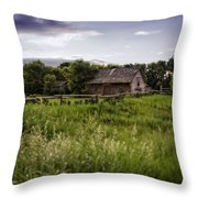 Watching You From Afar Throw Pillow
