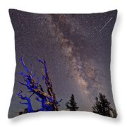 Watchman Throw Pillow