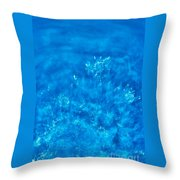 Water. Throw Pillow by Alexandr  Malyshev