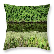 Water And Green Throw Pillow