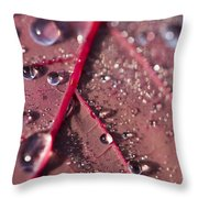 Water And Leaf Throw Pillow