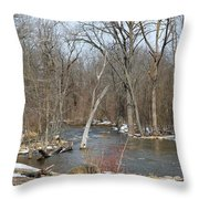 Water And Snow Throw Pillow