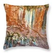 Water Artworks Throw Pillow