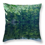 Water At Peace Throw Pillow
