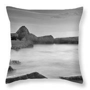 Water Barriers Throw Pillow