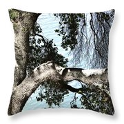 Water Beyond The Tree Throw Pillow