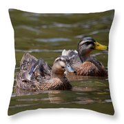 Water Buddies - Female Mallards Throw Pillow
