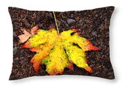 Water Colored Leaf - Autumn Throw Pillow
