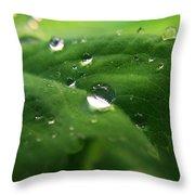 Water Diamonds Throw Pillow