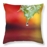 Water Dripping Throw Pillow