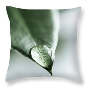 Water Drop On Leaf Throw Pillow