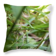 Water Droplet On Grass Blade Throw Pillow