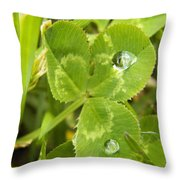 Water Droplets On Clover Throw Pillow
