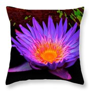 Water Droplets On Lily Throw Pillow