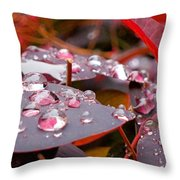 Water Drops After The Rain Throw Pillow