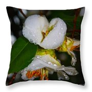 Water Drops Galore  Throw Pillow
