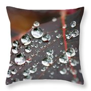 Water Drops On Cotinus Throw Pillow