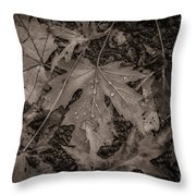 Water Drops On Fallen Leaves Throw Pillow