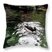 Water Duck Throw Pillow