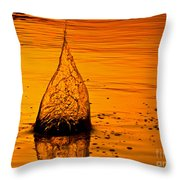 Water Fire Throw Pillow