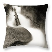 Water Flume  Throw Pillow