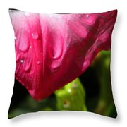 Water For Bees Throw Pillow