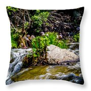 Water Garden Throw Pillow