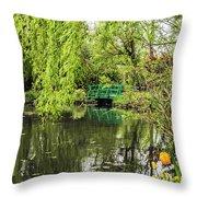 Water Garden Wonder Throw Pillow