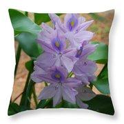 Water Hyacinth Throw Pillow