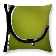 Water Ice Iron Throw Pillow