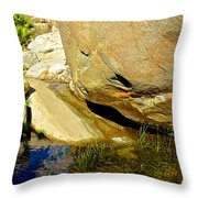 Water In Oasis On Borrego Palm Canyon Trail In Anza-borrego Desert Sp Campground-ca  Throw Pillow