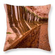 Water Is Life - Coyote Gulch - Utah Throw Pillow
