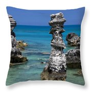 Water Is Magic Throw Pillow