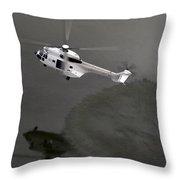 Water Landing Throw Pillow