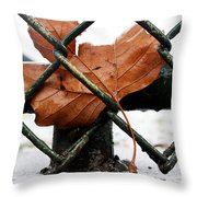 Water Leaf Throw Pillow