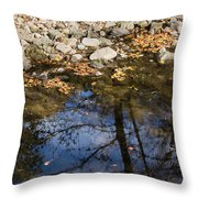 Water Leaves Stones And Branches Throw Pillow