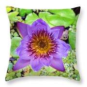 Water Lilies 12 Throw Pillow