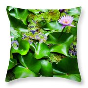 Water Lilies 31 Throw Pillow