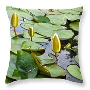 Water Lilies Aligned Throw Pillow