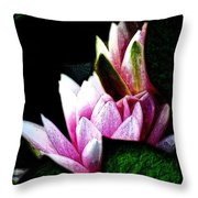 Water Lilies IIi Throw Pillow
