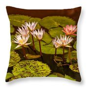 Water Lilies Img_6388 Throw Pillow
