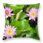 Water Lilies 3 Throw Pillow
