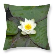 Water Lily - White Throw Pillow